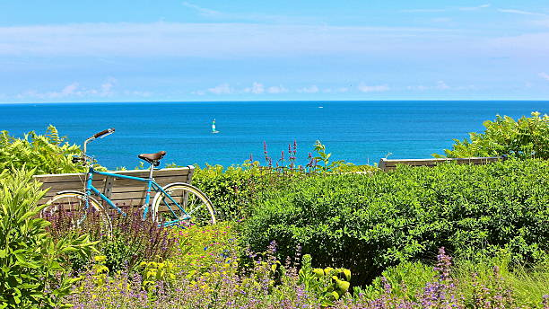 bicycle, park benches and flowers overlooking lake - lake michigan stock pictures, royalty-free photos & images