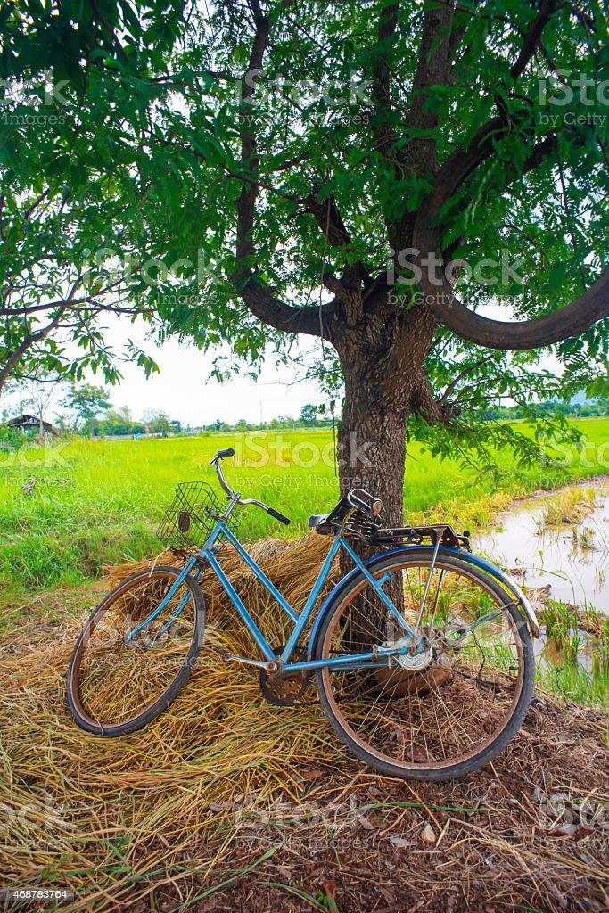 Bicycle Retro stock photo