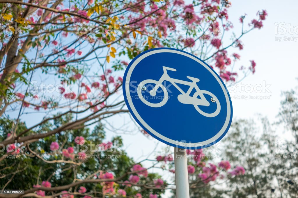 Bicycle sign in the park. stock photo