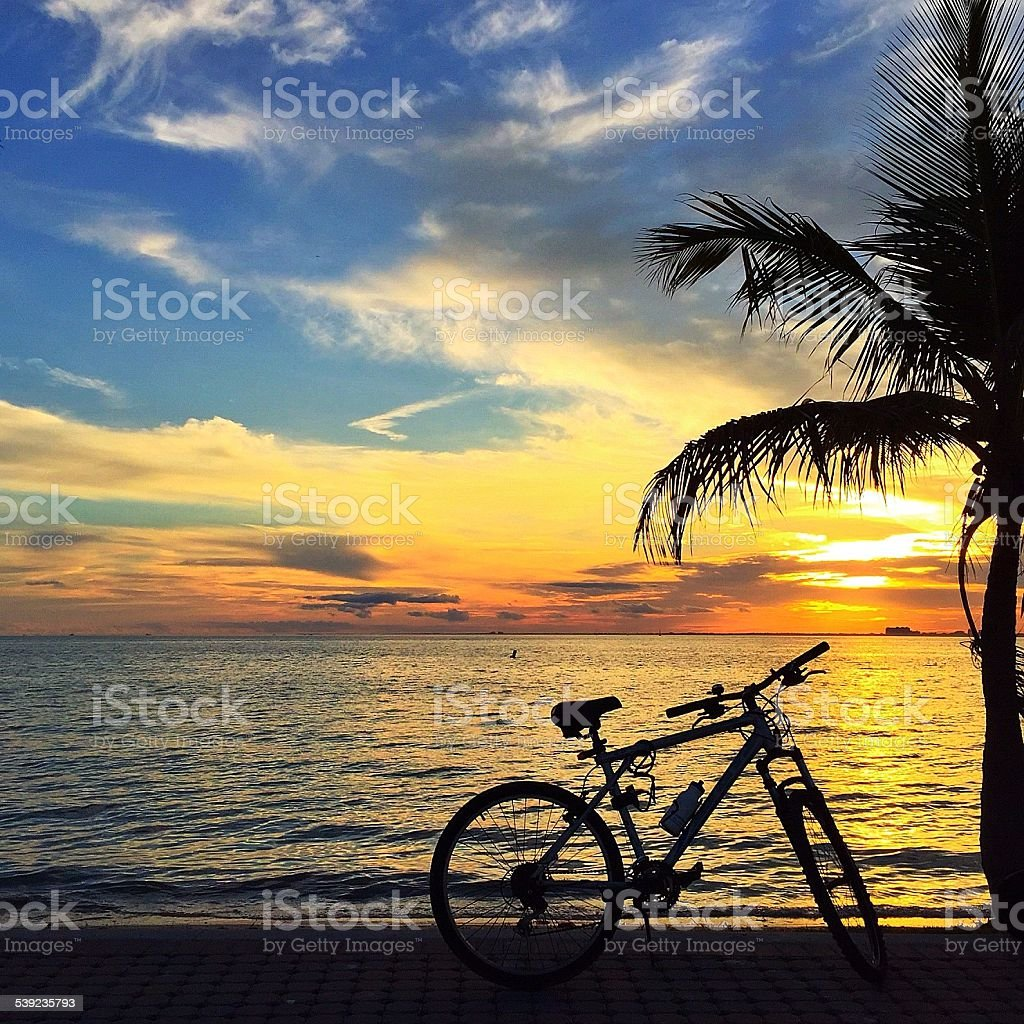 Bicycle silohuette royalty-free stock photo