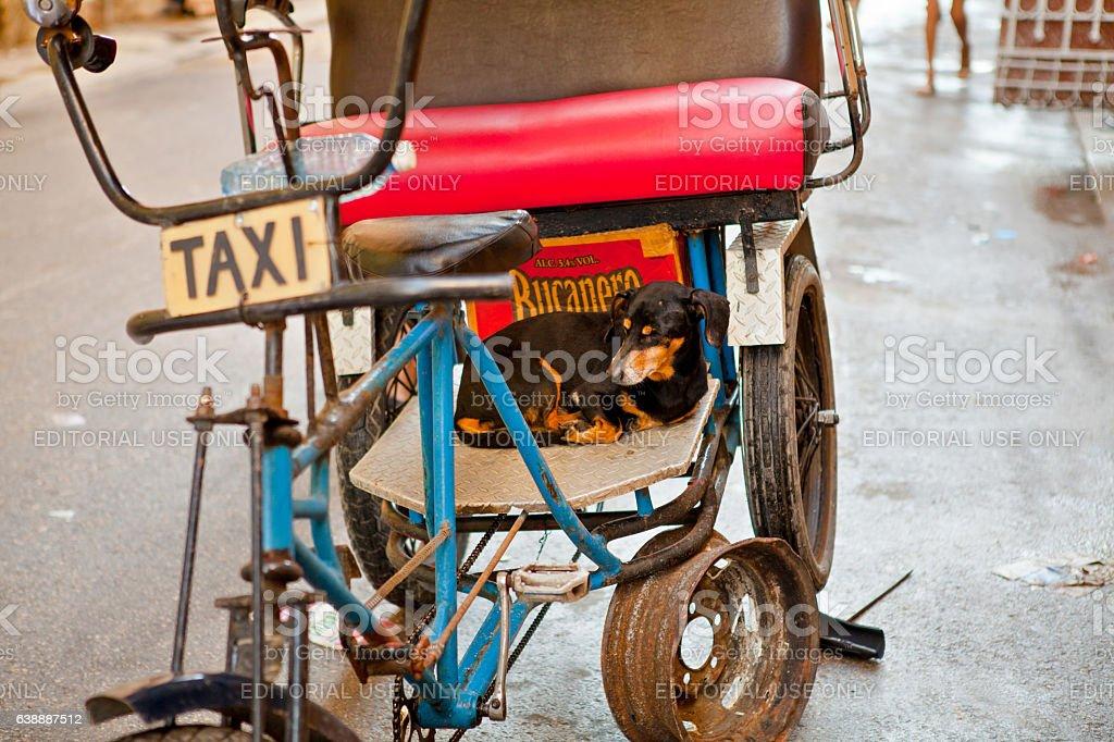 Bicycle taxi in Old Havana / Cuba stock photo
