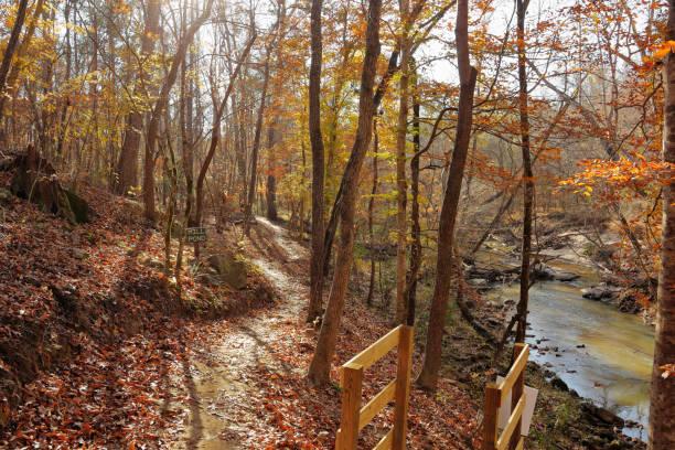 Bicycle trail Autumn views, November in South Carolina stock photo