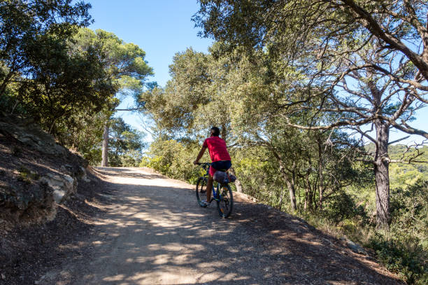 Bicycle trip in a wood on the island of Porquerolles Provence is famous for its hills, herbs, lavender, gastronomy and medieval villages var stock pictures, royalty-free photos & images
