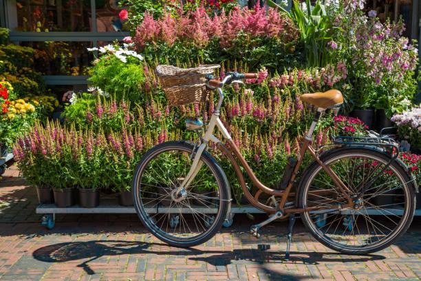 Fahrrad mit Korb vor blühenden Pflanzentöpfen – Foto