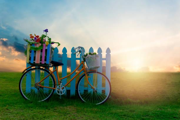 Fahrrad mit Blume Crate and Beautiful sunset Szene. – Foto