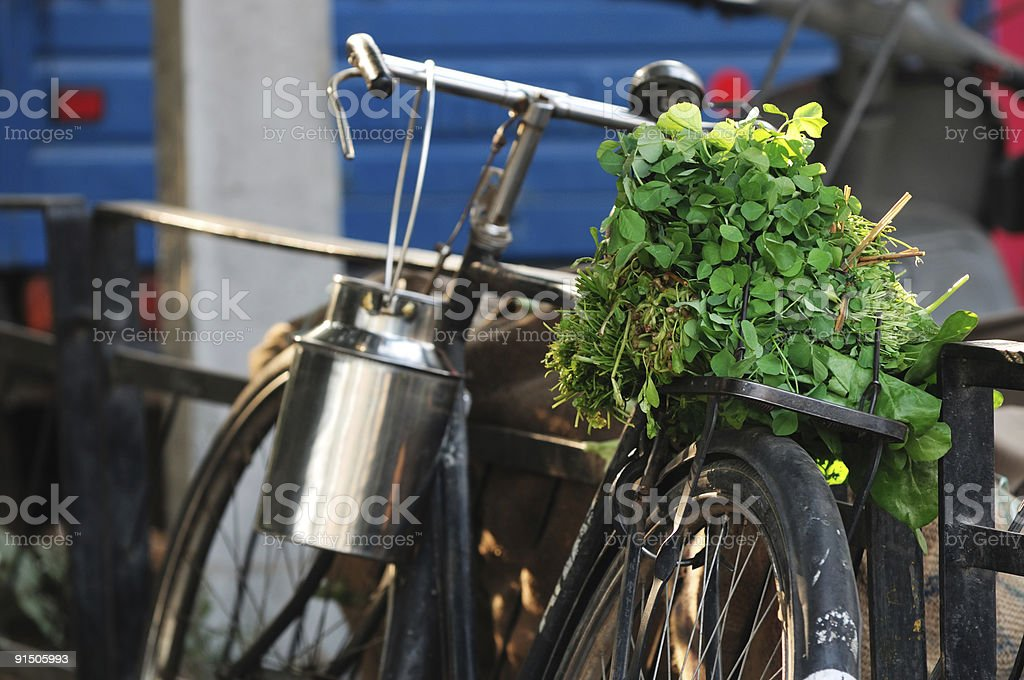 Bicycle with Vegetables stock photo