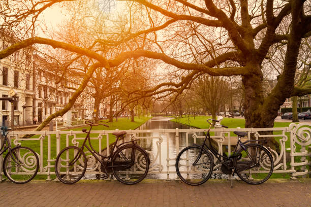 Bicycles in Rotterdam stock photo