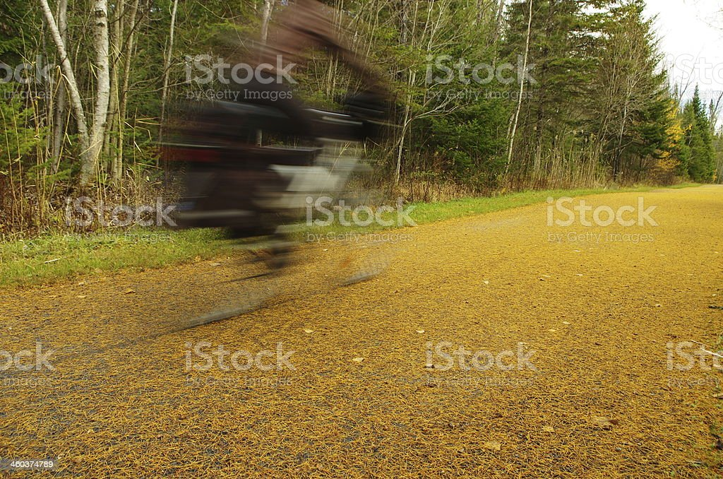 Bicycling in the gold stock photo
