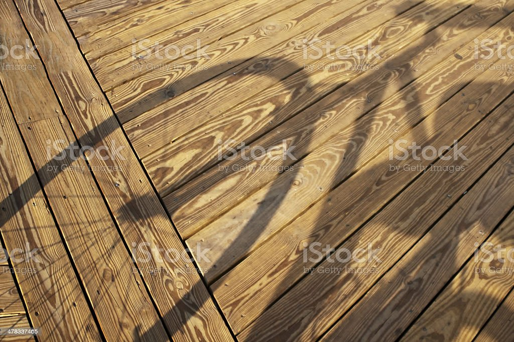 Bicyclist's Shadow royalty-free stock photo