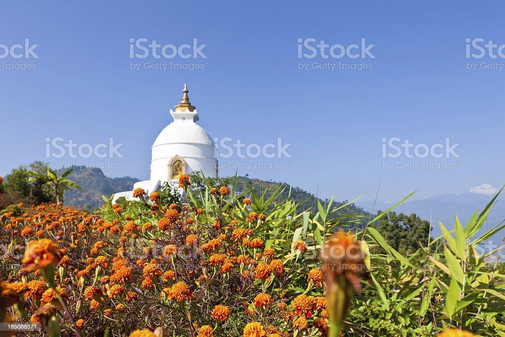 Biddhist Temple stock photo