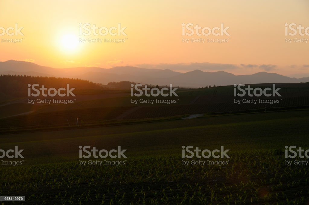 Biei Hill and sunset stock photo