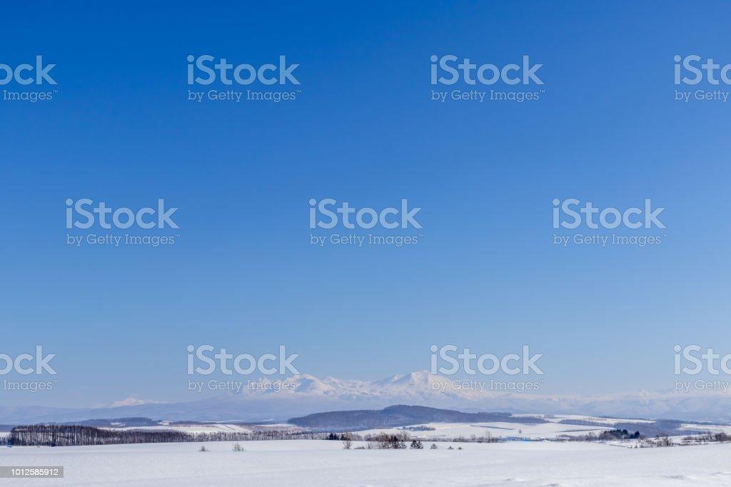 冬の美瑛 ストックフォト