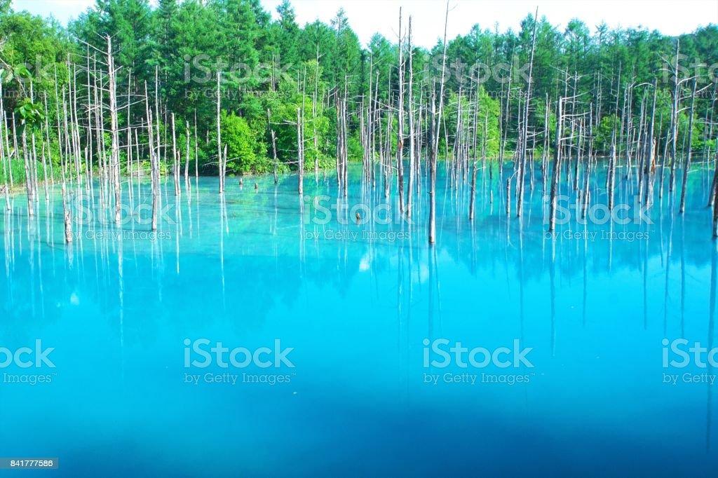 Biei's Blue Pond stock photo