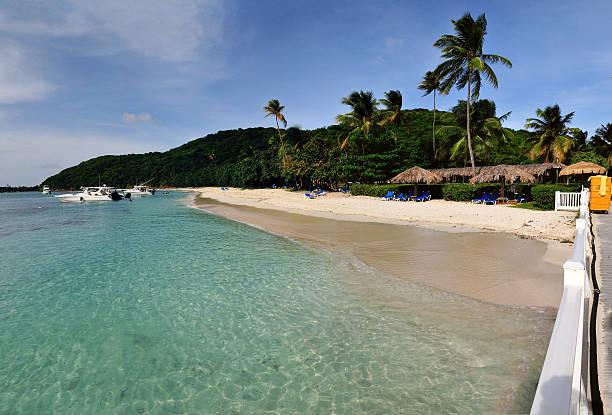 Bienvenido a Palomino Tropical beach of Palomino island in Puerto Rico palomino stock pictures, royalty-free photos & images