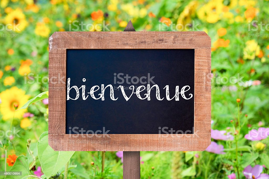 Bienvenue (meaning welcome) written on a vintage wooden frame chalkboard, stock photo