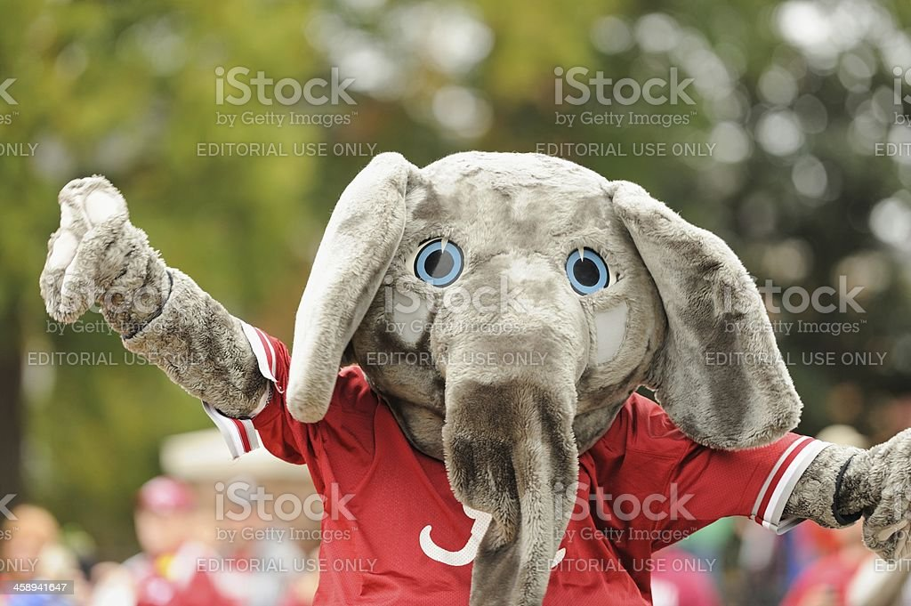 Big Al in Alabama homecoming parade stock photo