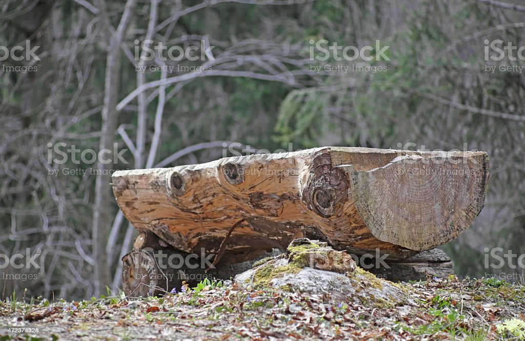 big altar in the middle of the forest stock photo