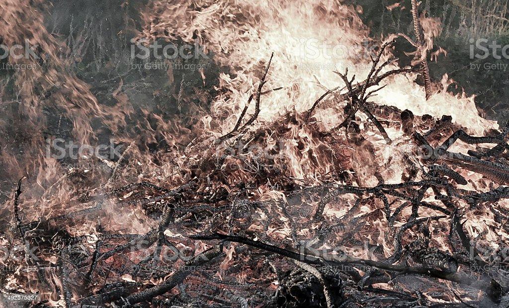 Big and intense outdoor bonfire royalty-free stock photo