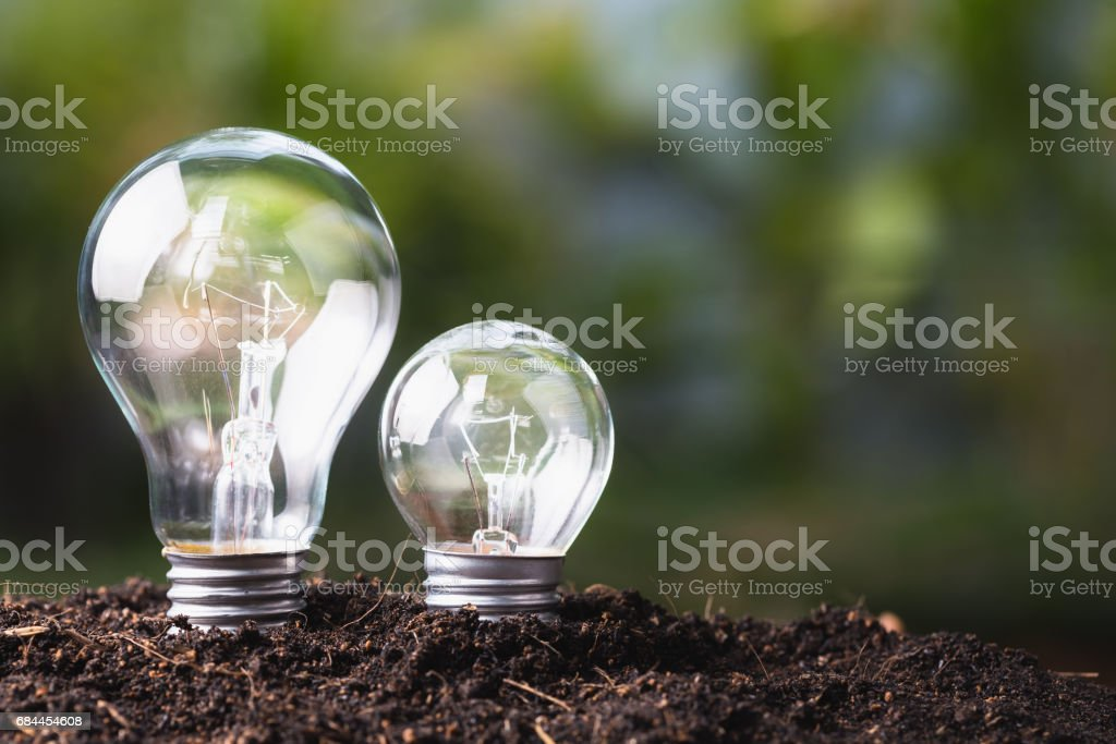 Big and Small Bulb stock photo
