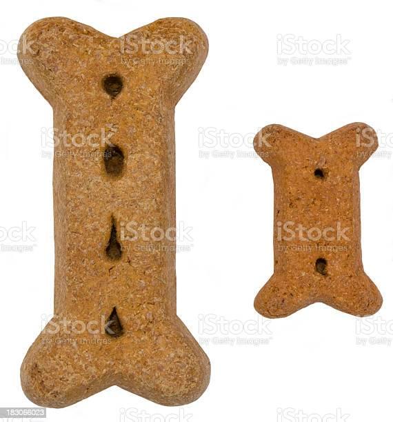 Big and small dog bones picture id183066023?b=1&k=6&m=183066023&s=612x612&h=ztsqzf1fxmroio1non1j5aag14rjopxyjk8hduwzaqe=