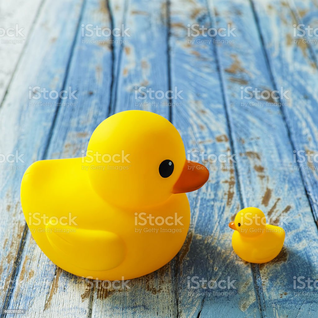 Big And Small Rubber Duck Facing Each Other Talking Stock Photo ...