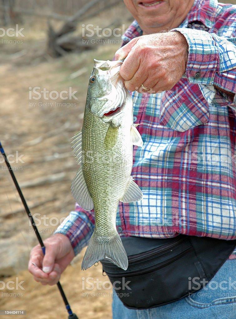 Big Bass royalty-free stock photo