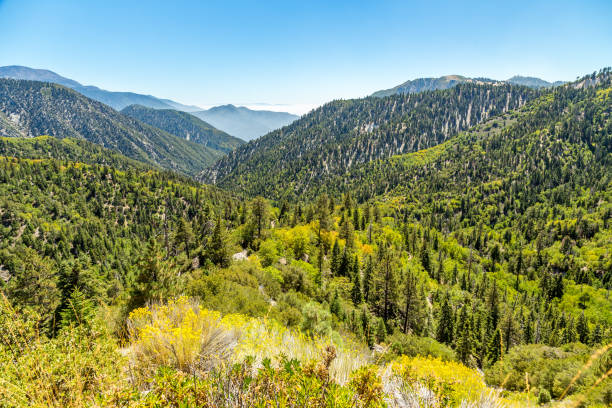 Big Bear Creek Valley The view down Big Bear Creek Valley in the San Bernardino National Forest from Butler Peak san bernardino california stock pictures, royalty-free photos & images