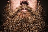 istock Big Bearded Man Portrait 533835729