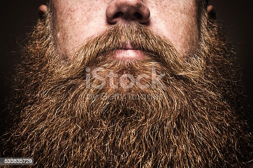 A close up portrait of a mans large red beard, his facial hair filling the image frame.  His face is obscured by the composition, emphasizing the masculine mustache and beard. Horizontal image with copy space on beard.
