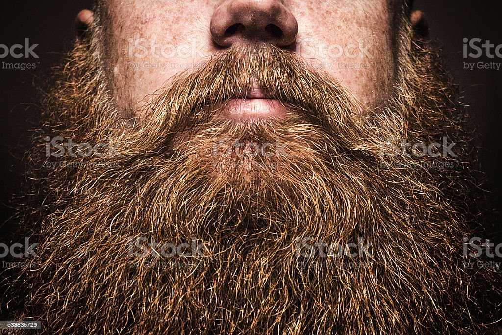 Gros homme barbu Portrait - Photo