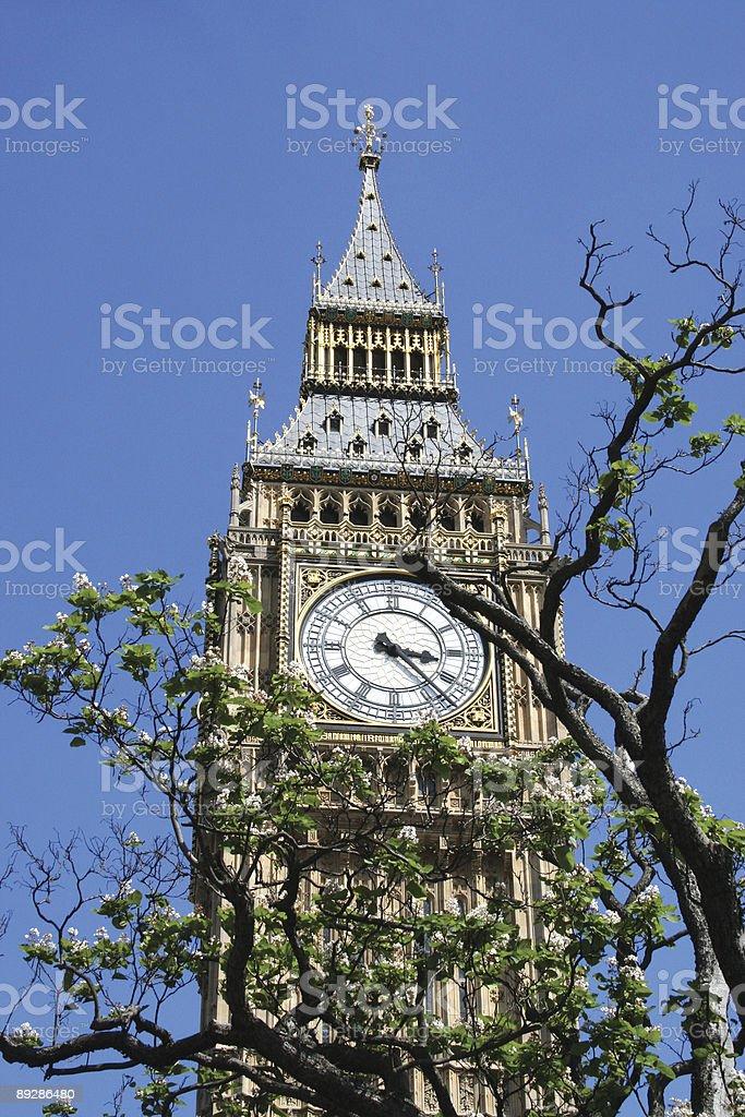 Big Ben Parliament royalty-free stock photo
