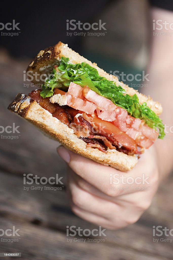 Big BLT stock photo