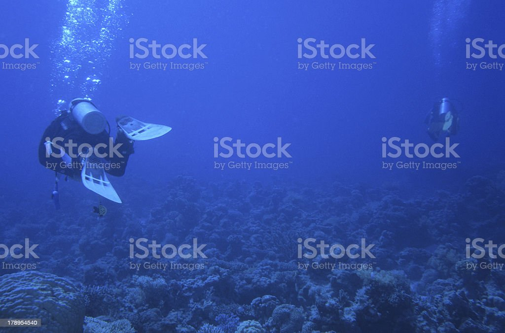 Big blue diving royalty-free stock photo