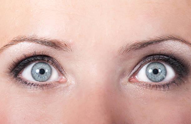 Big blue Augen – Foto