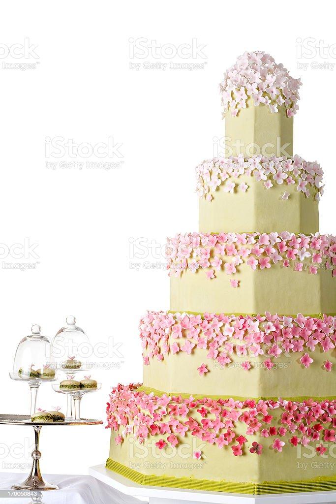 Big Cake royalty-free stock photo