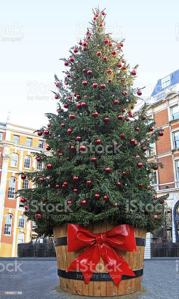 Big Christmas tree stock photo