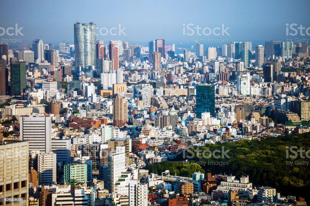 Big city view - Tokyo, Japan stock photo