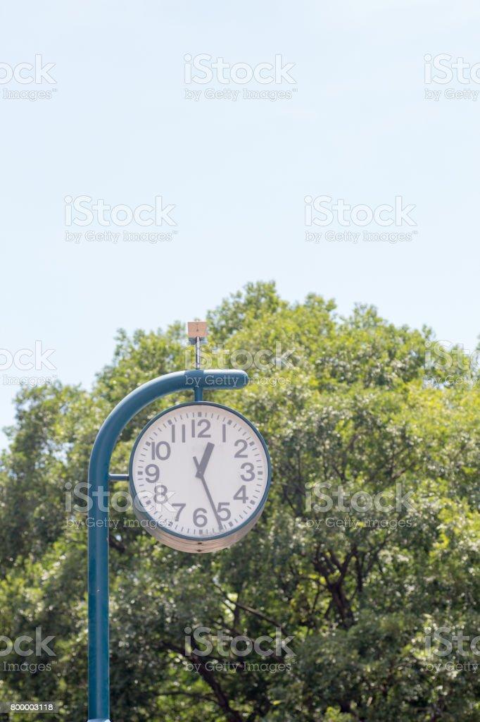 Big clock in a park stock photo