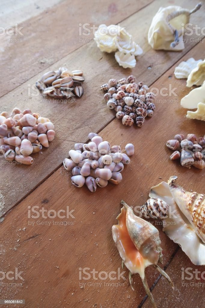 Big collection of colorful seashells on a wooden floor zbiór zdjęć royalty-free