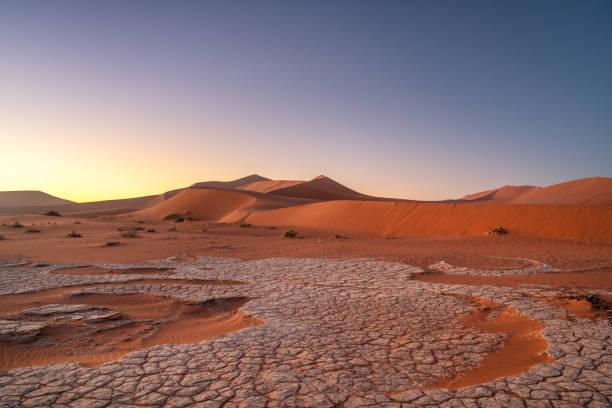 big daddy dune, sossusvlei, namib desert, namibia - namib wüste stock-fotos und bilder