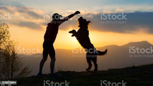 Big dog he gets up on two paws to take a biscuit from a man with at picture id876876884?b=1&k=6&m=876876884&s=612x612&h=nnrhkd4ud1tnmkjokj2et3dkubgn34c2fuozfjyvr14=