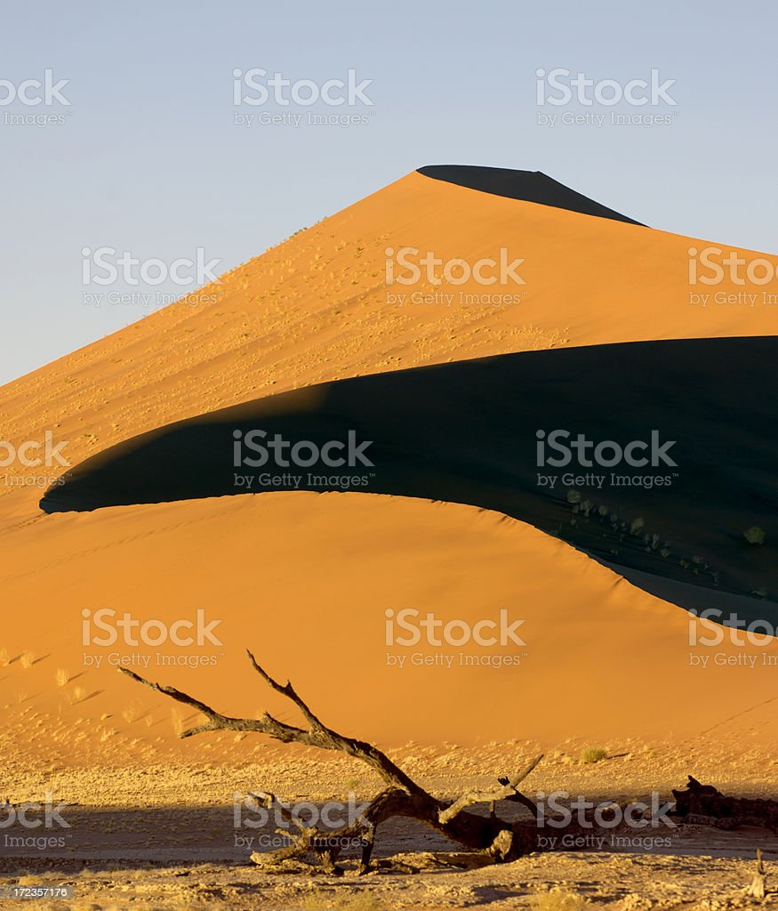 Big dune in the Dead Vlei royalty-free stock photo