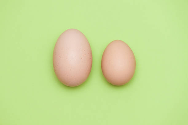 A big egg and a small egg on the light green background. stock photo