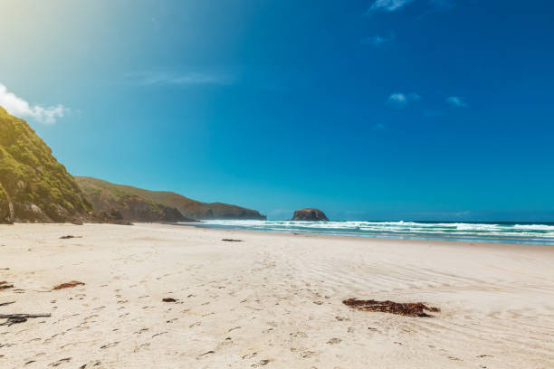 Big empty Allans Beach near Dunedin, New Zealand stock photo