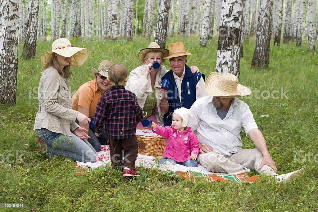 big family picnic royalty-free stock photo