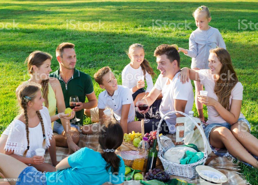 Big family picnic stock photo