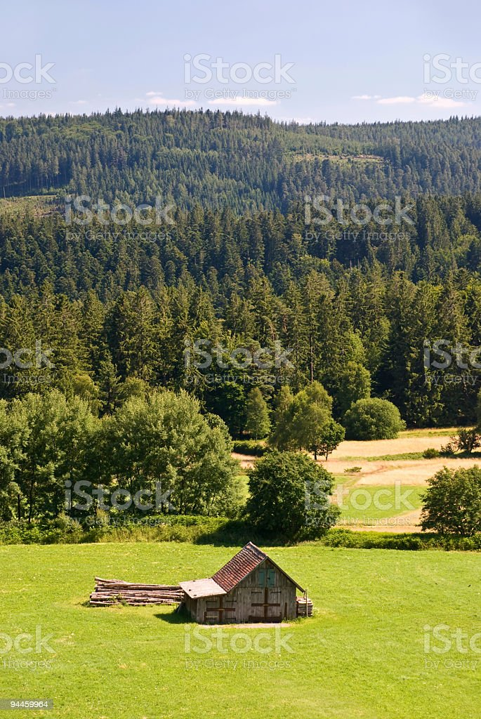 big field and  few old cottages in the swiss alps royalty-free stock photo