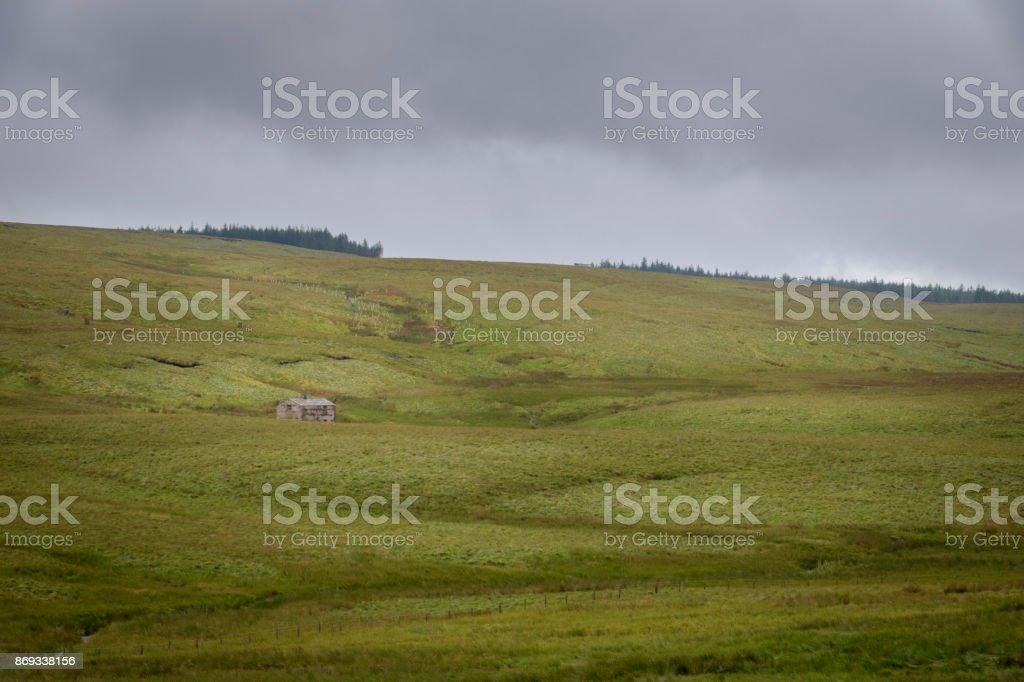 Grote velden van gras modderig en nat in de Engelse Moor foto