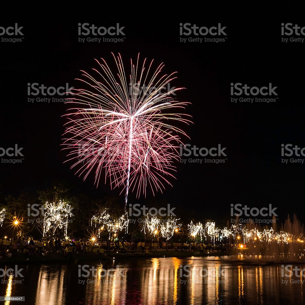 Big fireworks in the sky over a parks stock photo