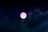Big full bright pink purple magic moon with colorful clouds. Perigee night, lunar closest to Earth